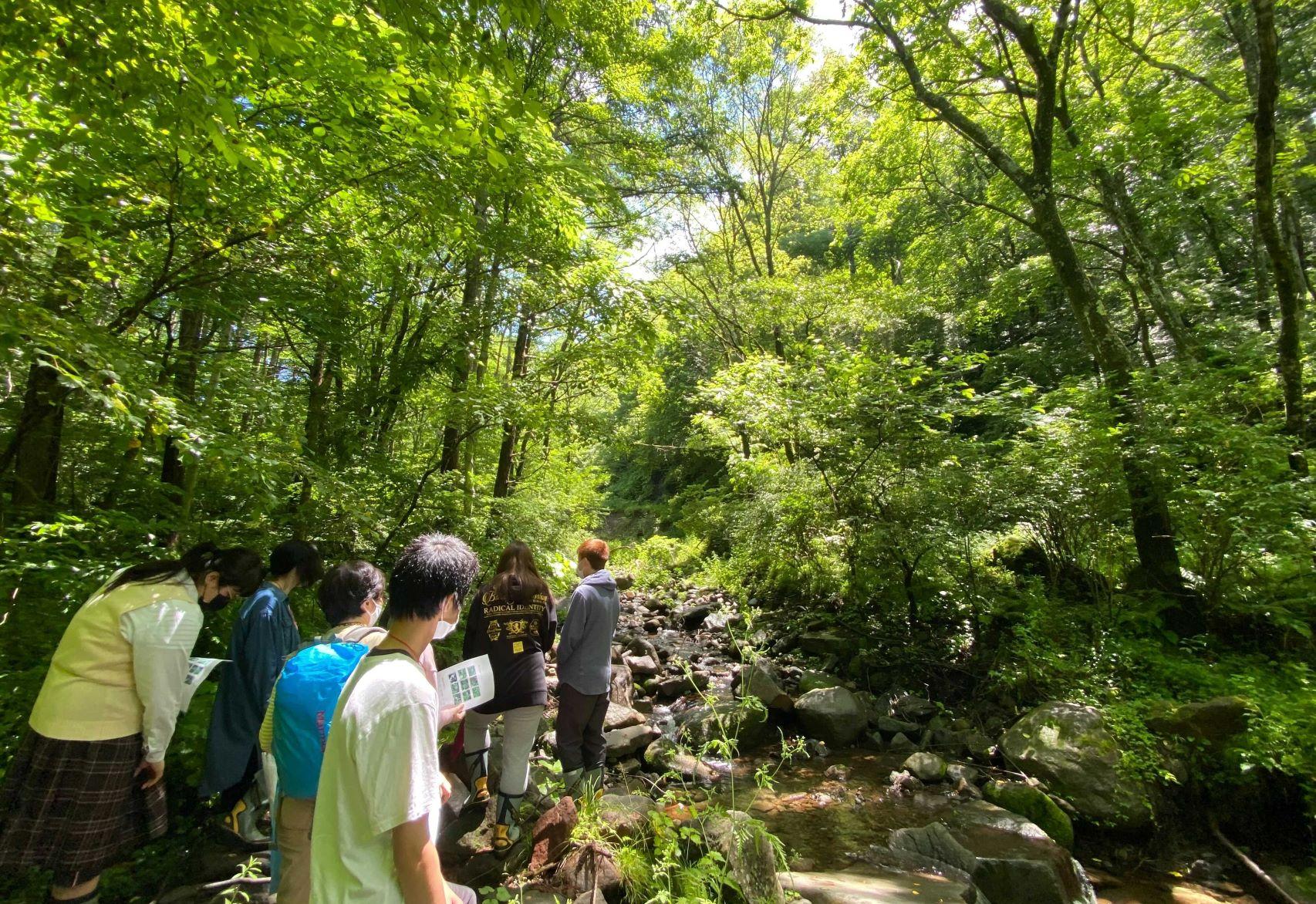 長野県の森で自然を満喫!長野スクーリングスタート!